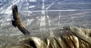 Ученые разгадали загадку погибшей цивилизации Наска