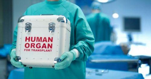 organ e1459712696714