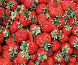 Заготовки на зиму: как правильно заморозить фрукты, ягоды и овощи