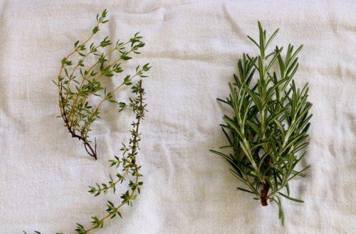 Как дольше сохранить зелень свежей(5)