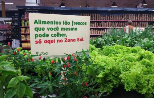 3061399 inline s 1 at this brazilian supermarket customers pick produce from a garden e1468783644769