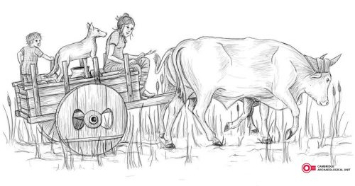 Reconstruction drawing of a Bronze Age cart used at Must Farm copyright CAU
