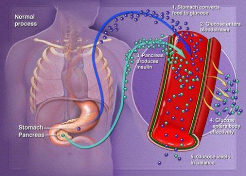 content blood sugar1  econet ru e1468848332151