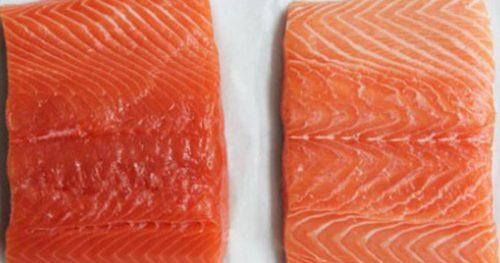как выбрать лучший лосось