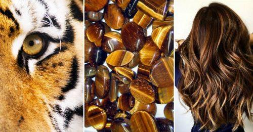 слова: всё кори таттл тигровый глаз особенности функционирования