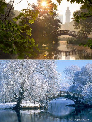 summer winter 44