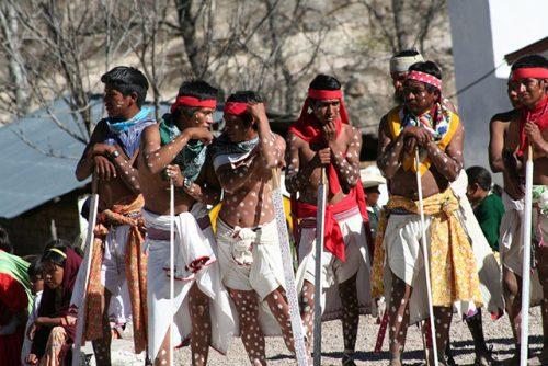 Особенности национальной охоты племени тарахумара