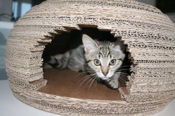 Домик-иглу из картона для кошки