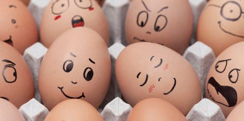 10 интересных фактов о яйцах