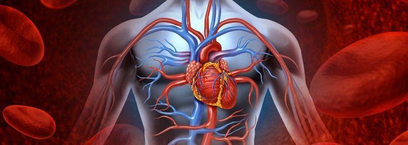 blood pressure heart 1400x500 result