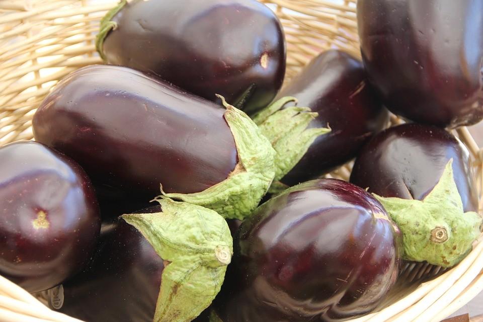 eggplant 237448 960 720