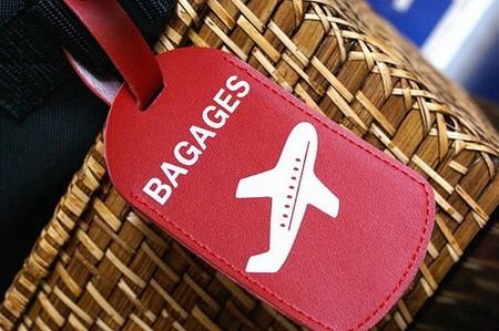 perevozka bagazha v samolete 1 1