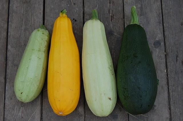 zucchini 1637435 640
