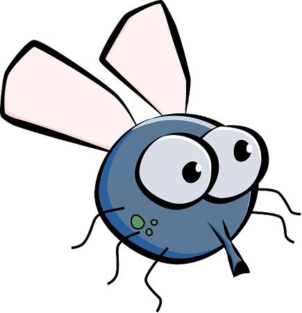 housefly 155460 640