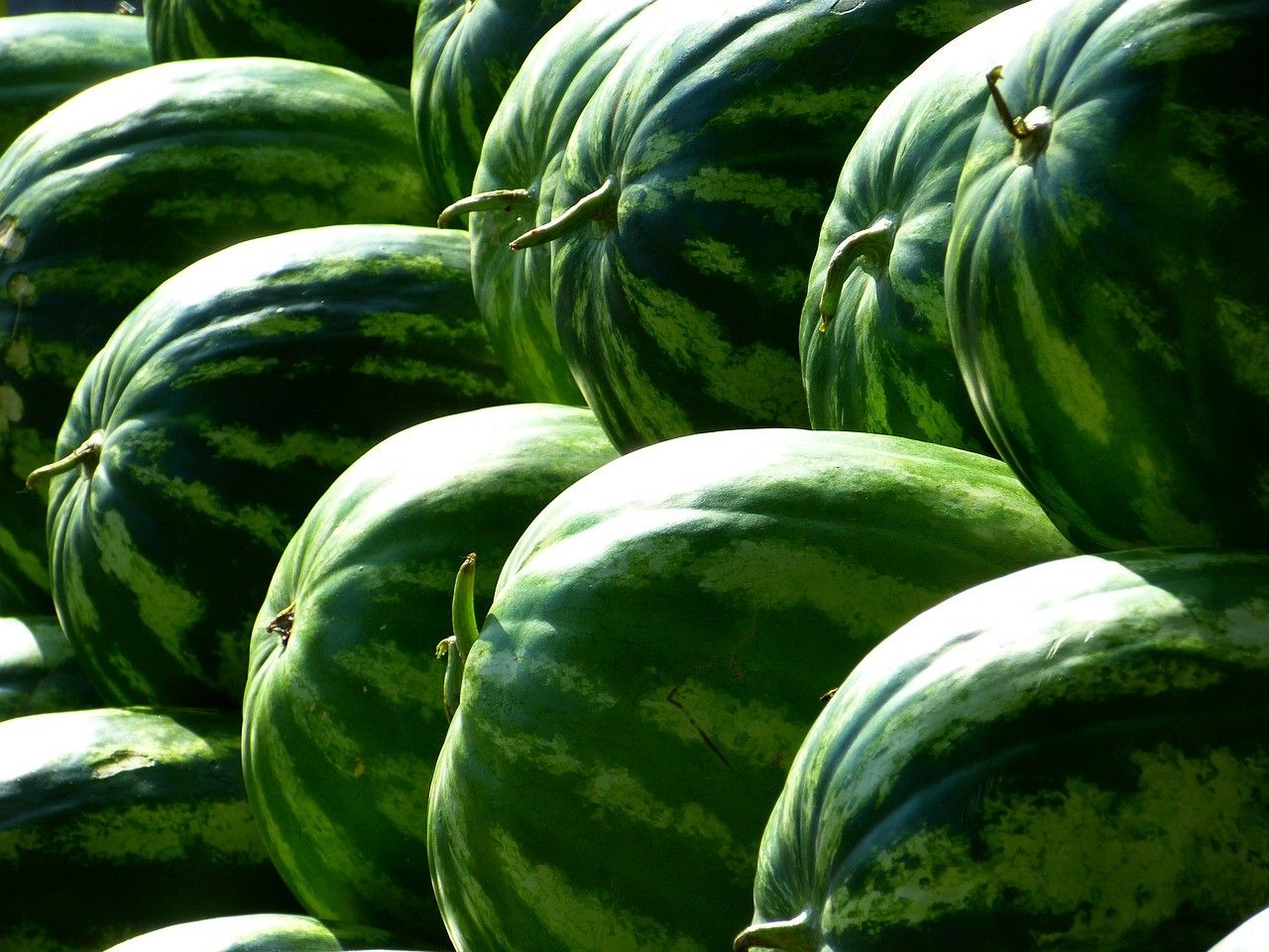 melons 197025 1280