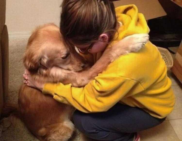 свято верю что собака — последний ангел на Земле