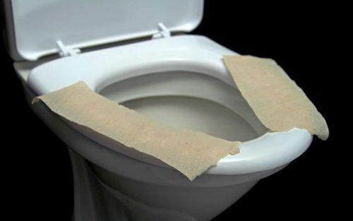 1552316307 tualet