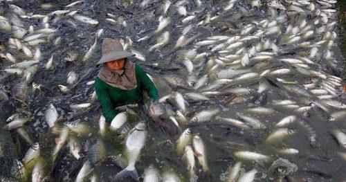 20 mega opasnyh produktov iz kitaja kotoryh luchshe izbegat ljuboj cenoj