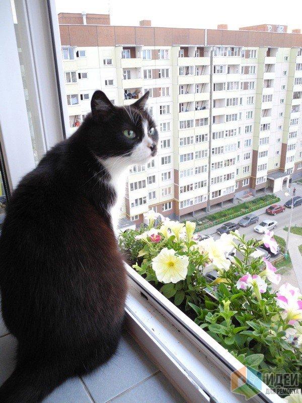 Старший ребенок - вовсю наслаждается балконной жизнью))