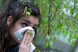 allergija na cvetenie vesnoj. chto delat pomozhet chereda