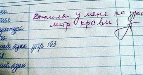 dlja vas ocherednaja podborka zapisej v shkolnyh dnevnikah