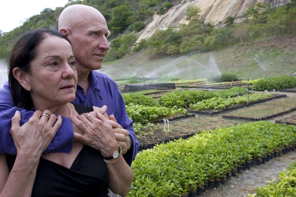 suprugi iz brazilii prevratili pustosh v tropicheskij raj vysadiv bolee 2 millionov derevev