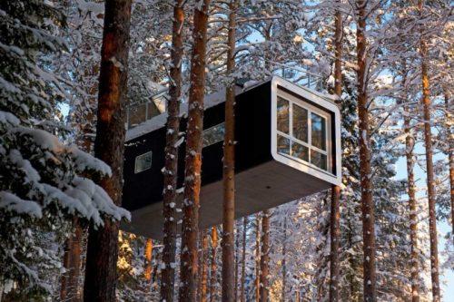 udivitelnyj otel v sosnovyh lesah shvecii