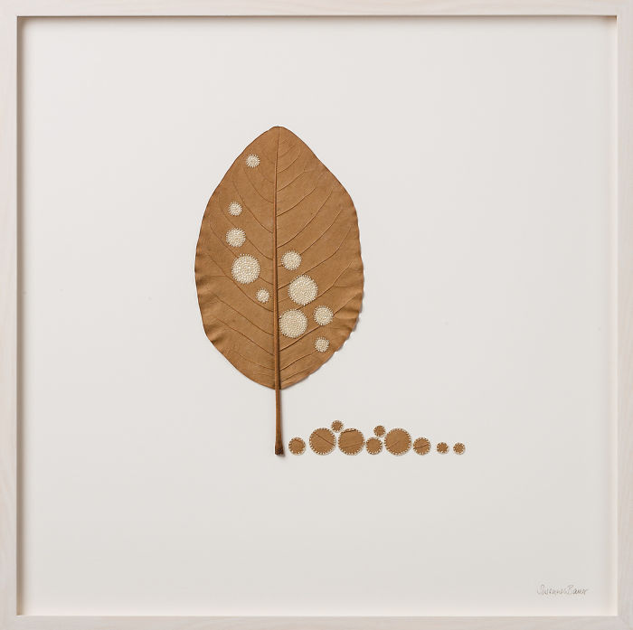 u kazhdogo listochka svoja individualnost. prevrashhenie suhih listev v proizvedenija iskusstva