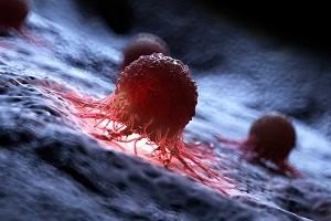 rakovye kletki 2