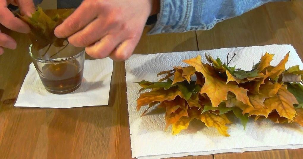 prostejshij sposob hranenija listev o kotorom malo kto znaet
